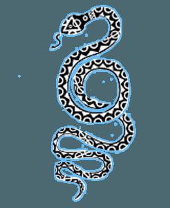 snakecopy copy